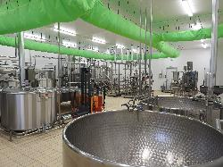Tejfeldolgozó üzem-Sajtgyártó üzem
